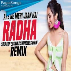 Are Re Re Meri Jaan Hai Radha (Remix) Saurabh Gosavi X Shameless Mani Poster