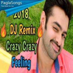 Crazy Crazy Feeling South Hit Song Mix Dj M Present Mp3 Song Download 320kbps Paglasongs