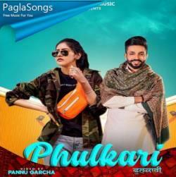 Phulkari Whatsapp Status Poster