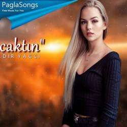 Neyim Olacaktin (Kadir YAGCI Remix) - Zehra Poster