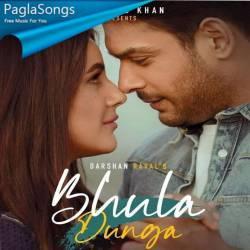Bhula Dunga Poster