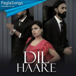 Dil Haare Poster