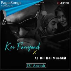 Koi Fariyaad X Ae Dil Hai Mushkil Mashup Dj Anvesh Mp3 Song Download 320kbps Paglasongs