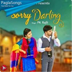 Sorry Darling Poster
