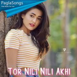 Tor Nili Nili Akhi Poster