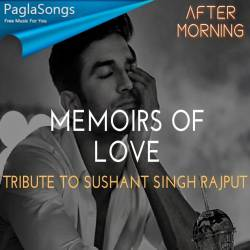 Memoirs of Love (Chillout Mashup) - Aftermorning Poster