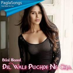 Dil Wale Puchde Ne Cha Poster