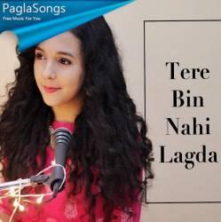 Tere Bin Nahi Lagda Dil Mera Dholna Poster