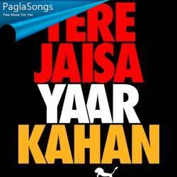 Tere Jaisa Yaar Kahan Poster