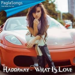 What Is Love Tommer Mizrahi Remix Mp3 Song Download 320kbps Paglasongs