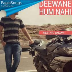 Deewane Hum Nahi Poster