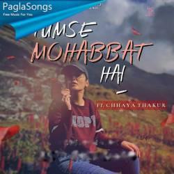 Tumse Mohabbat Hai Poster
