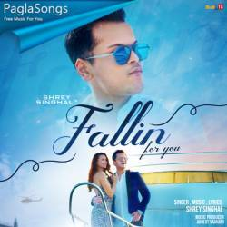 Fallin For You Poster