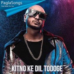 Kitno Ke Dil Todoge Poster