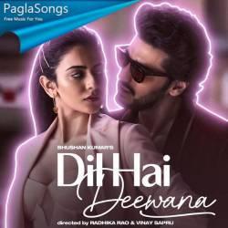 Dil Hai Deewana Poster