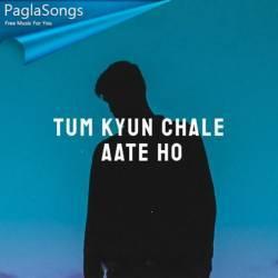 Tum Kyu Chale Aate Ho Poster